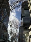 ヨドバシ側より旧JR貨物引き込み地域には高層ビルの建築ラッシュです、( ゜゜)by 管理者 480x640(86KB)